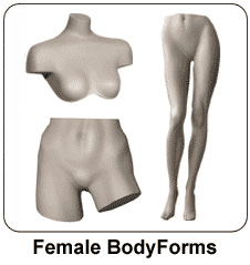female-bodyforms-01
